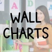 Bring wall charts to teach English abroad